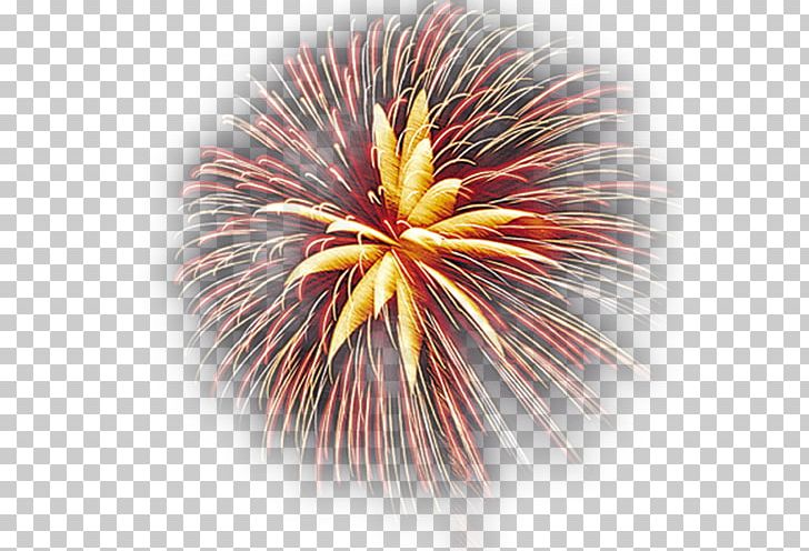 Fireworks PNG, Clipart, Cartoon Fireworks, Chinese, Chinese New Year.