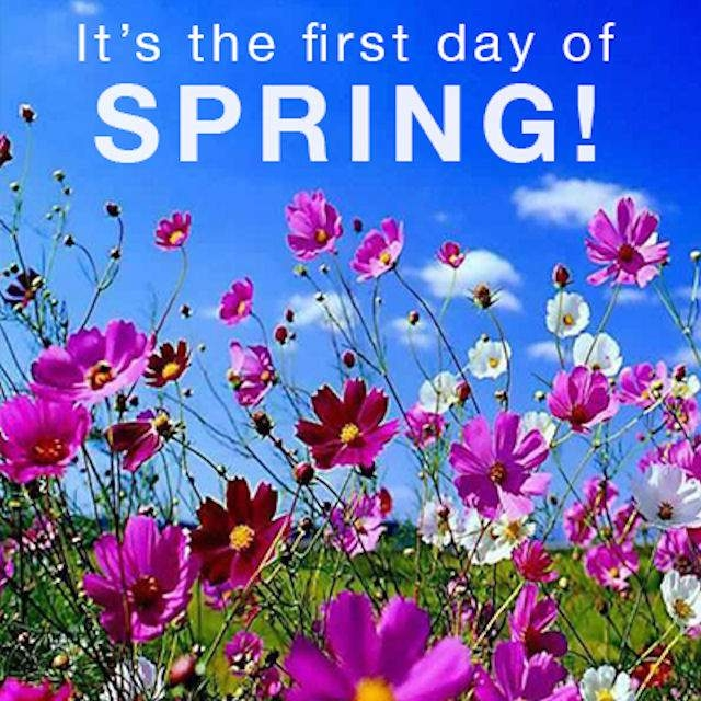 It's The First Day Of Spring Pictures, Photos, and Images for.