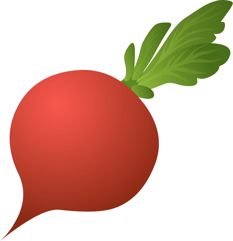 Red Radish Clipart Clipground