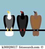 Fischadler Clipart Vektor Grafiken. 24 fischadler EPS Clip Art.