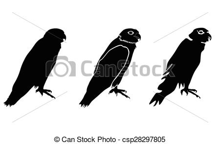Vektor Clipart von vektor, Fischadler, oder, Falke, meer.