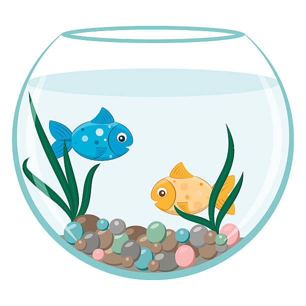 Aquarium fish clipart 4 » Clipart Station.