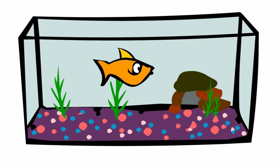 Aquarium Png.
