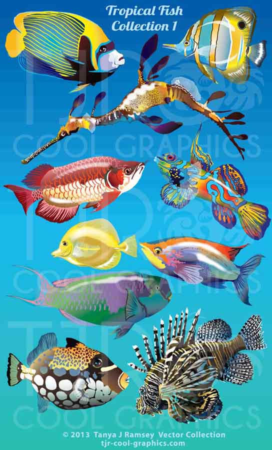 Ocean Clip Art Whales, Dolphins, Fish & Sharks, and Seals.