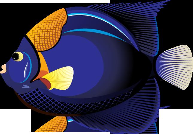 Fish Clip Art Color.