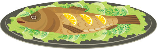 Grilled Fish Stock Illustrations.
