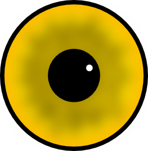 Fish Eye Clipart.