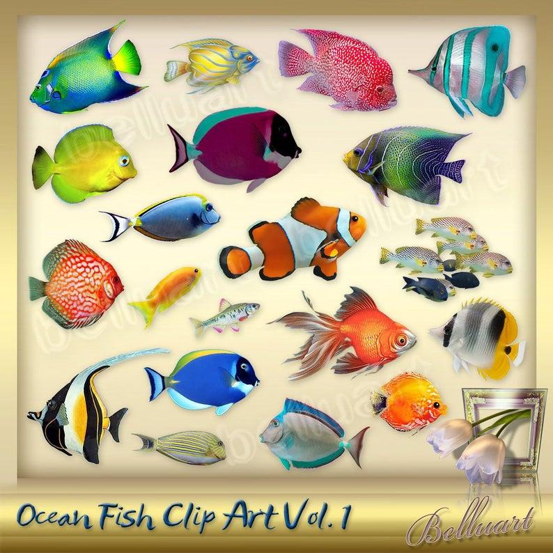 25 Ocean Fish Clipart Vol. 1.