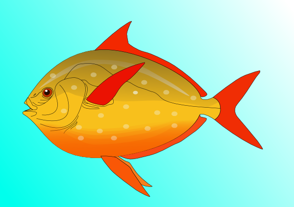 Colorful Fish In Water Clip Art at Clker.com.