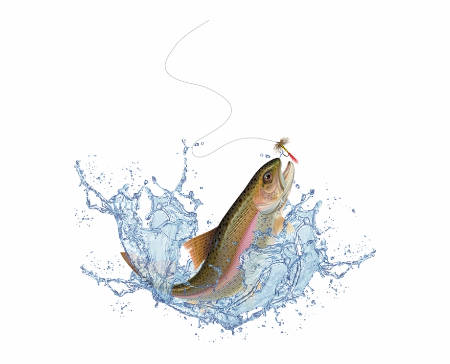 Jumping Fish Transparent Free PNG Images & Clipart Download #2035787.