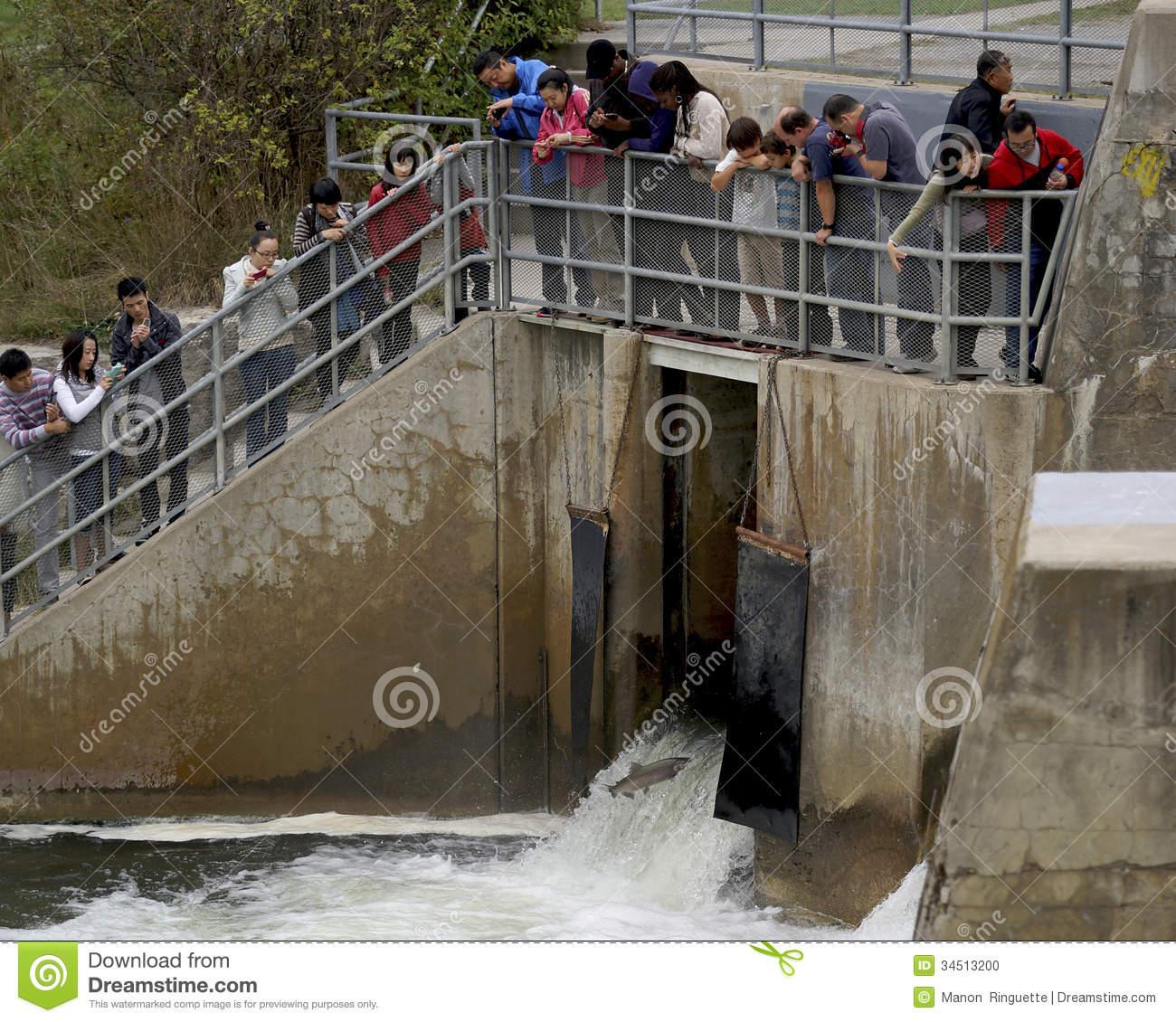Tourists Capture Photographs At Fish Ladder.