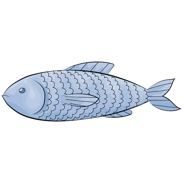 Fish Clipart. Free Download in .PNG or Vector format.