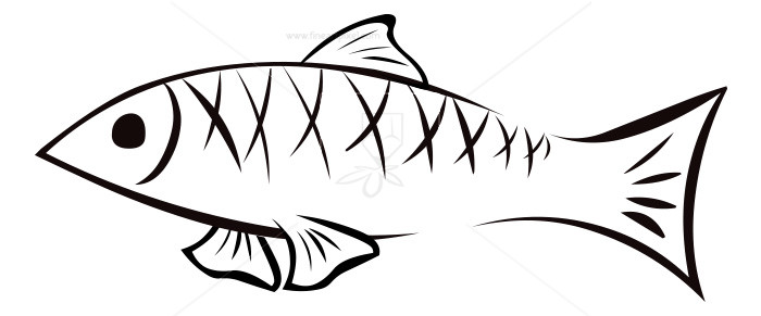 Fish Outline.