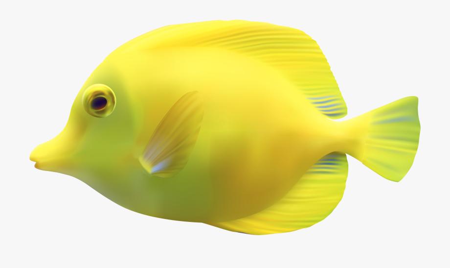 Yellow Zebrasomatang Fish Png Clipart.