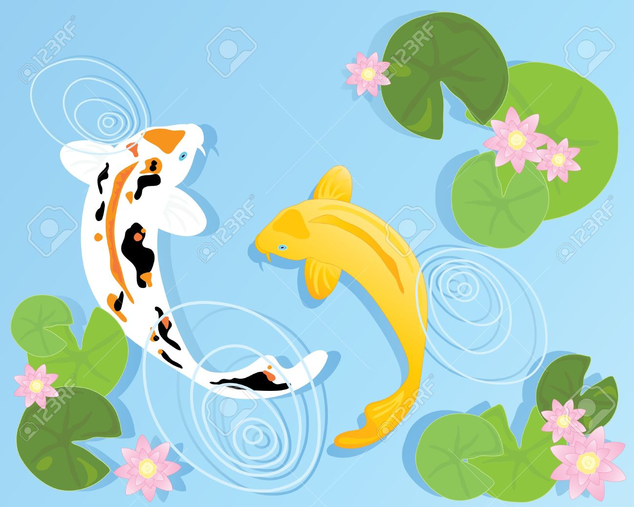 Koi fish pond clipart.