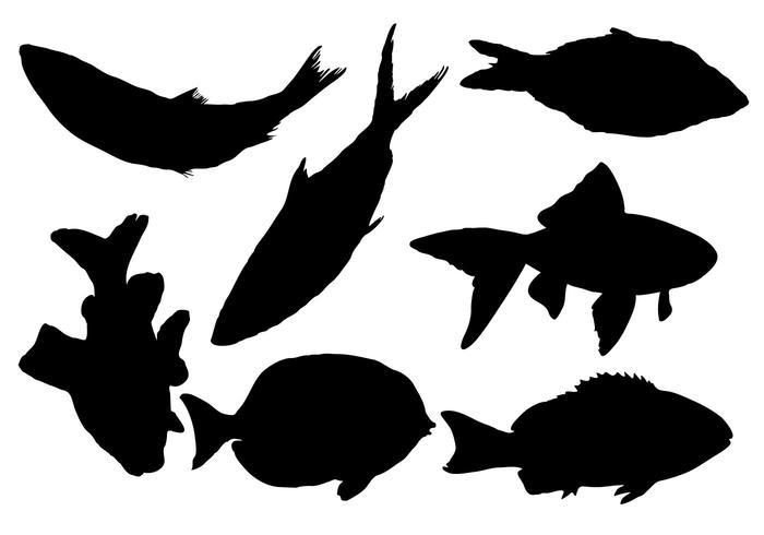 Free Fish Silhouette Vector.
