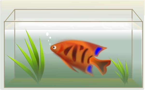 Fish Tank clip art (118419) Free SVG Download / 4 Vector.