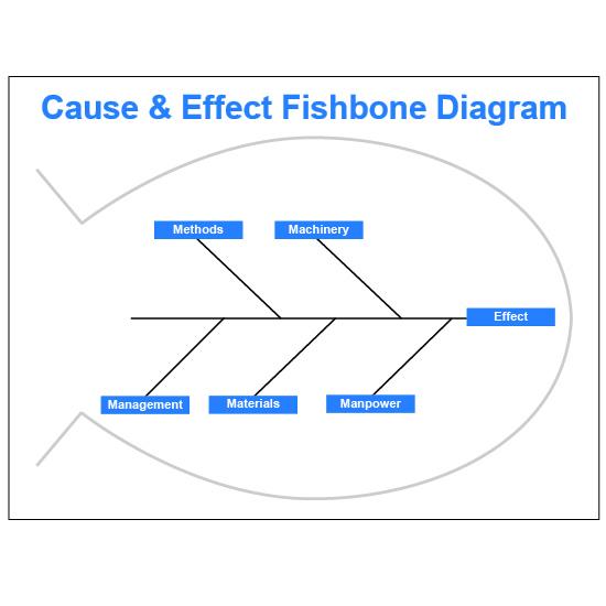 Fishbone Diagram Dry Erase Board.