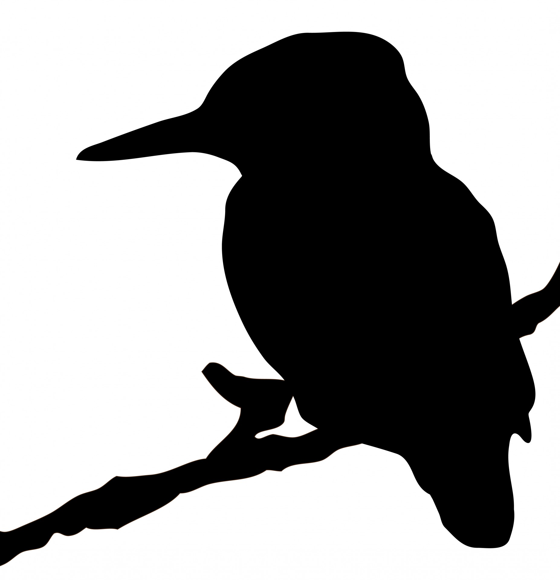 King fisher bird clipart.