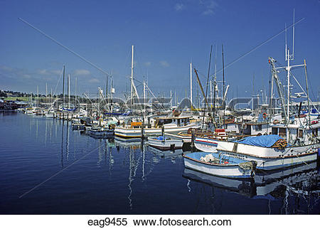Stock Image of Boats in the harbor at FISHERMAN'S WHARF.