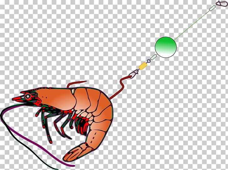 Fishing bait Fish hook Fishing tackle , shrimps PNG clipart.