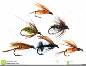 Fly Fishing Flies Clipart.