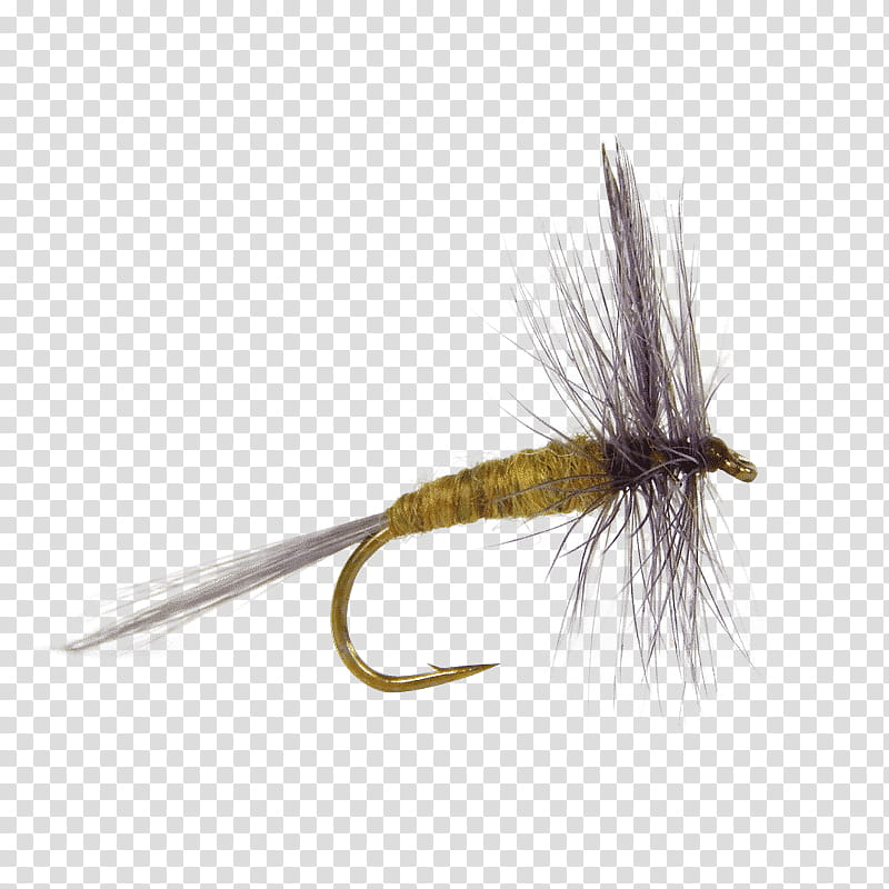 Fishing, Salmon Fly, Fly Fishing, Artificial Fly, Dry Fly.