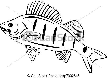 Clipart Vector of The big perch. River fish csp7302845.
