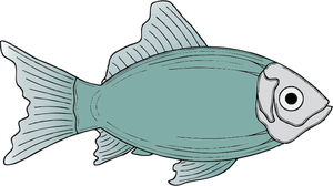 328 fisk gratis clipart.