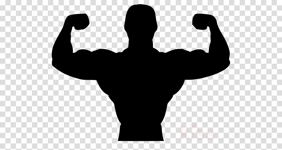 bodybuilding arm shoulder muscle physical fitness clipart.