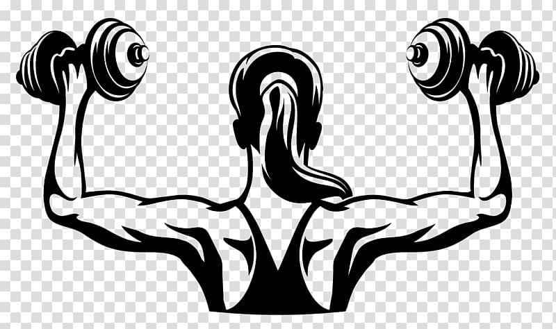 Physical fitness Logo Fitness centre Woman Dumbbell, Fitness.