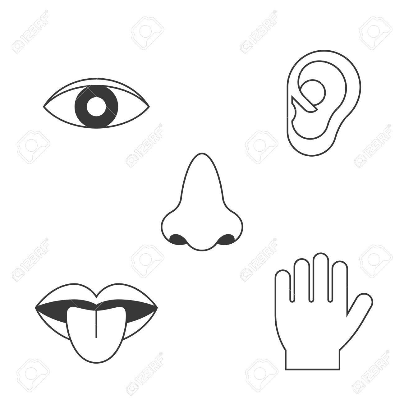 194 Five Senses free clipart.