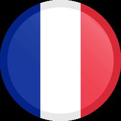 France flag icon.