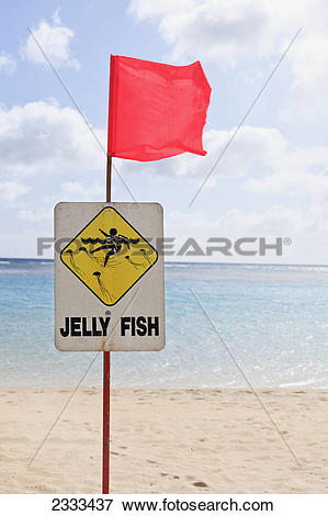 Picture of Sign on the beach with red flag warning of jelly fish.