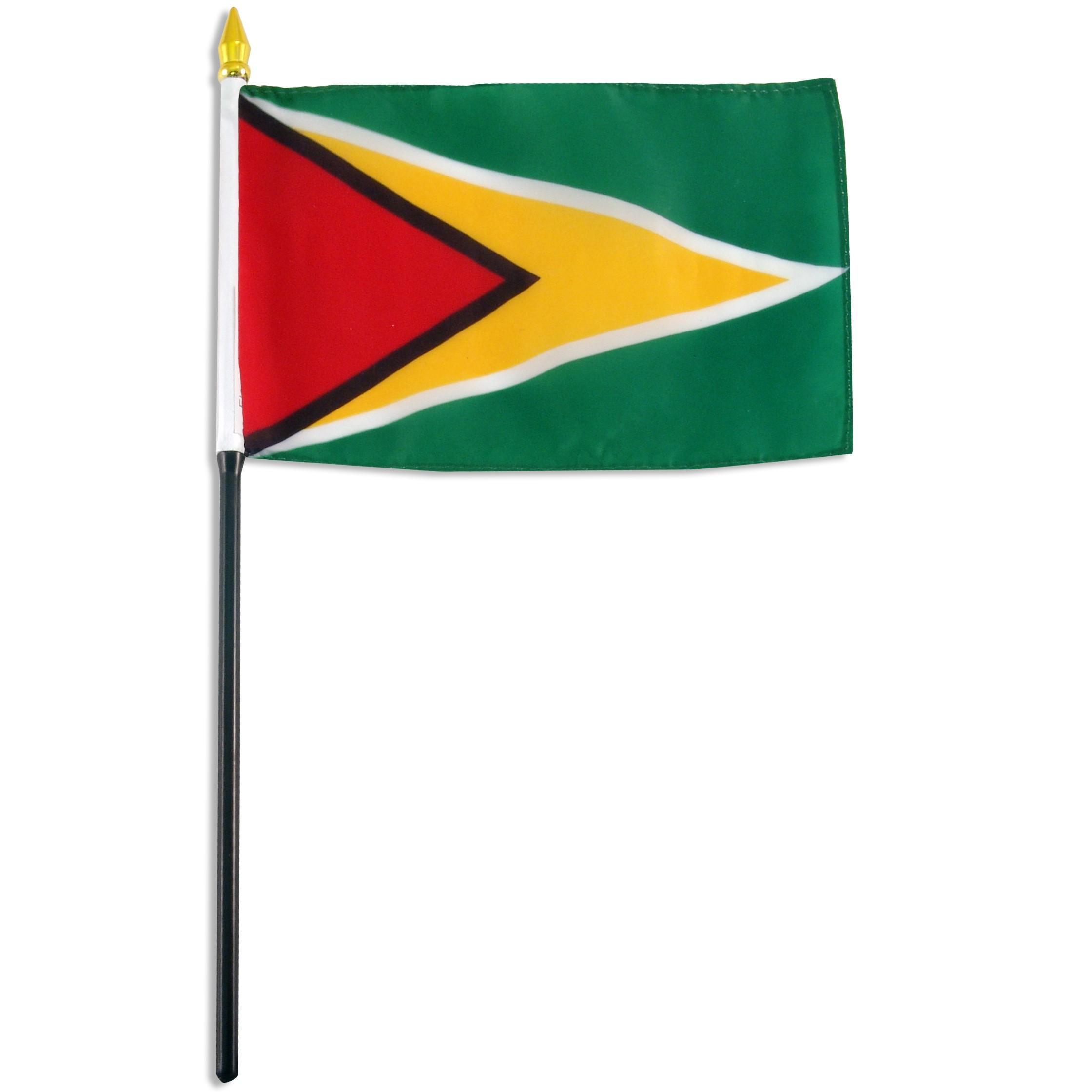 Guyana flag 4 x 6 inch.