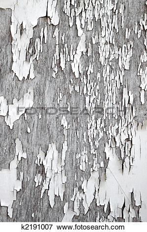 Picture of Old flaky white paint peeling off a wooden fence.