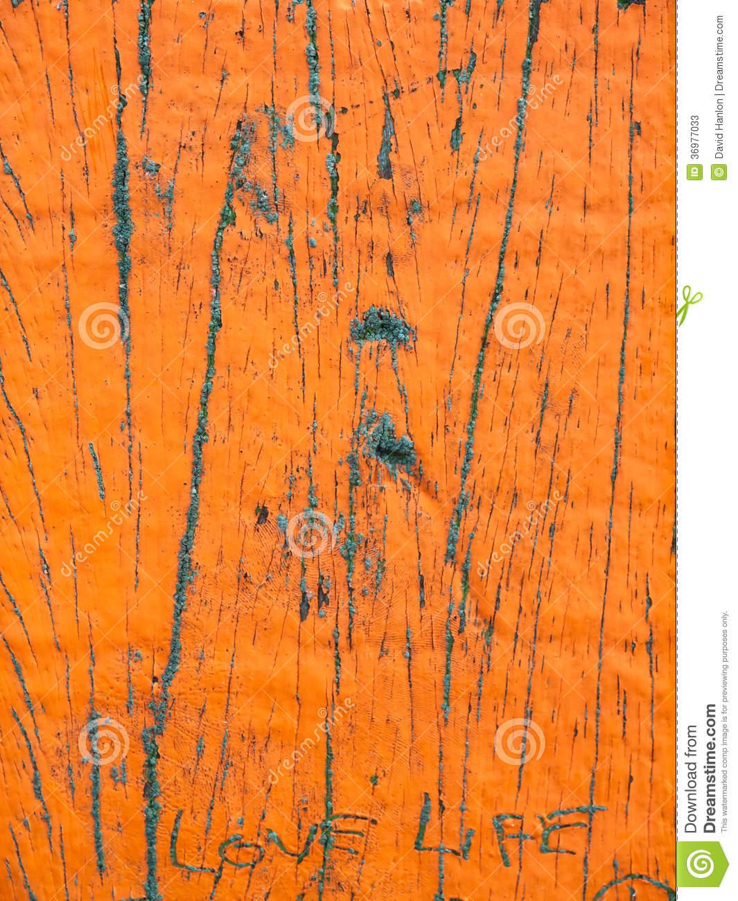 Flaking Paint On Weathered Wood Stock Photos.