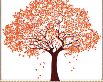 The flamboyant tree clipart.