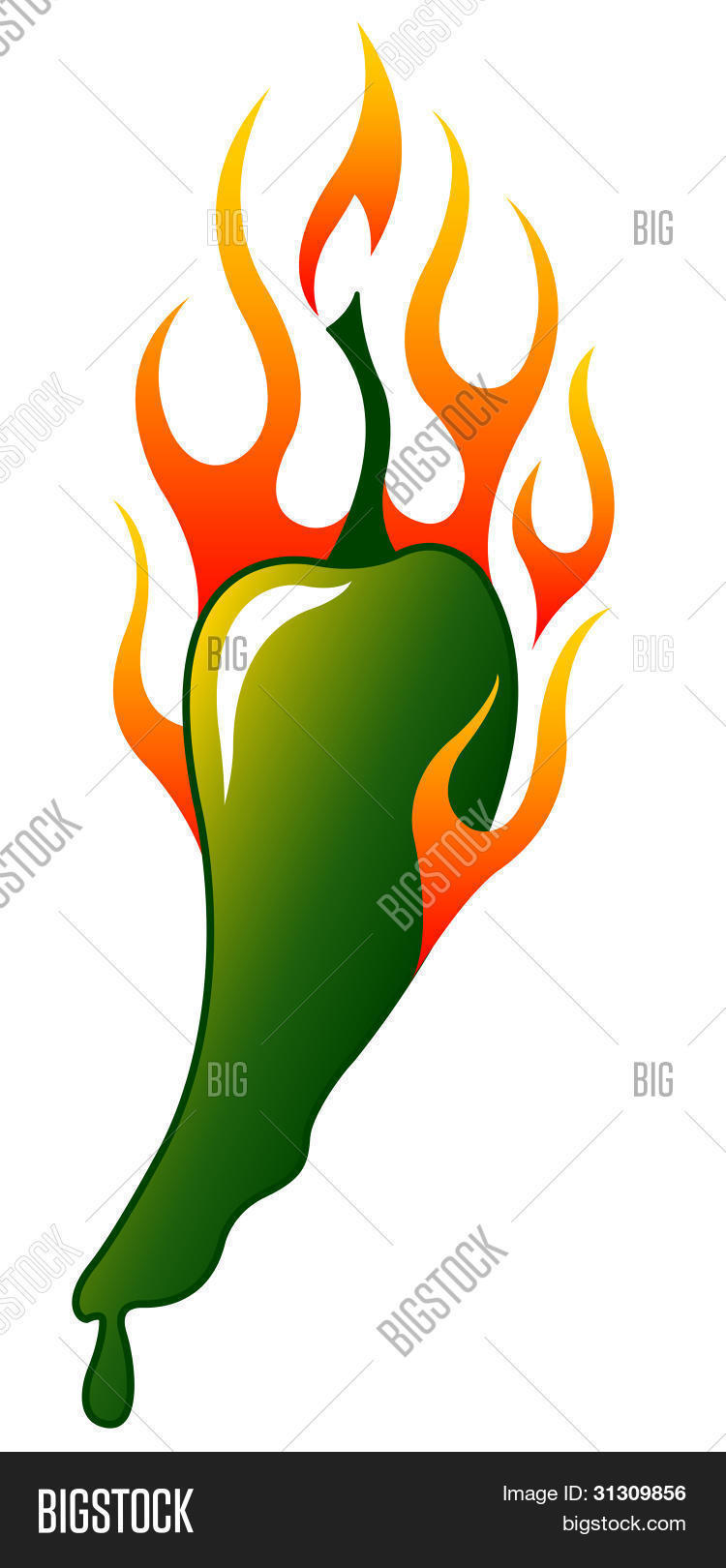 Flaming Jalapeno Stock Vector & Stock Photos.