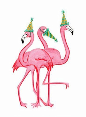 25+ Best Flamingo Birthday Memes.