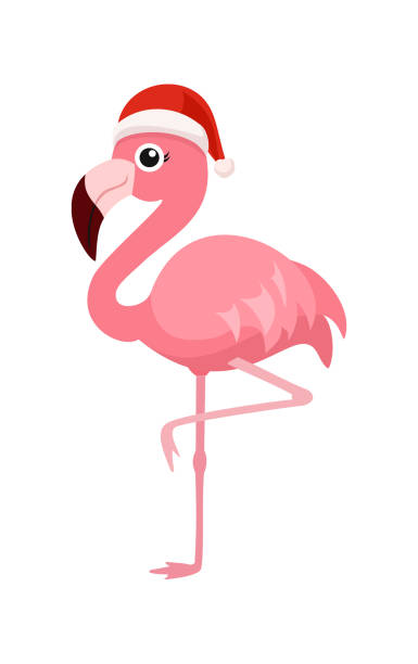 Best Christmas Flamingo Illustrations, Royalty.