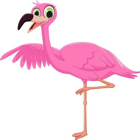 7 149 Pink Flamingo Stock Vector Illustration And Royalty Free.