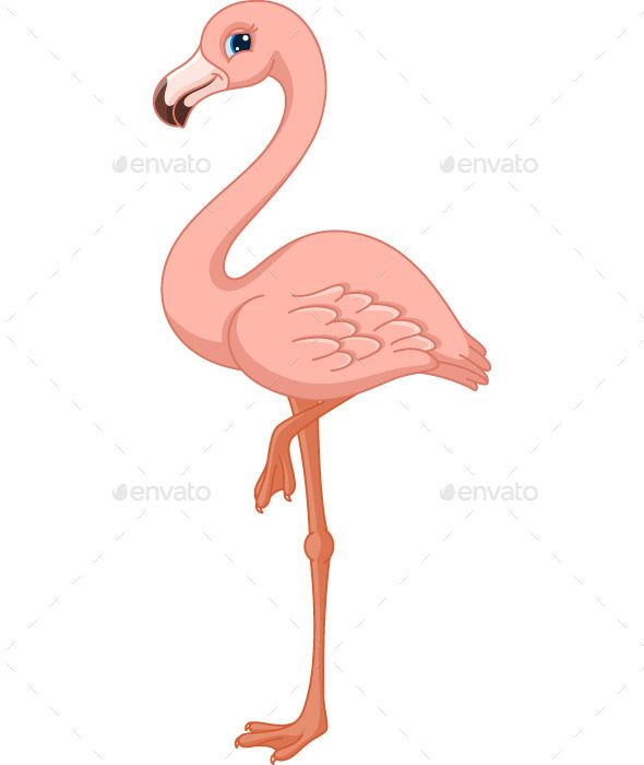 1000+ images about flamingo clip art on Pinterest.