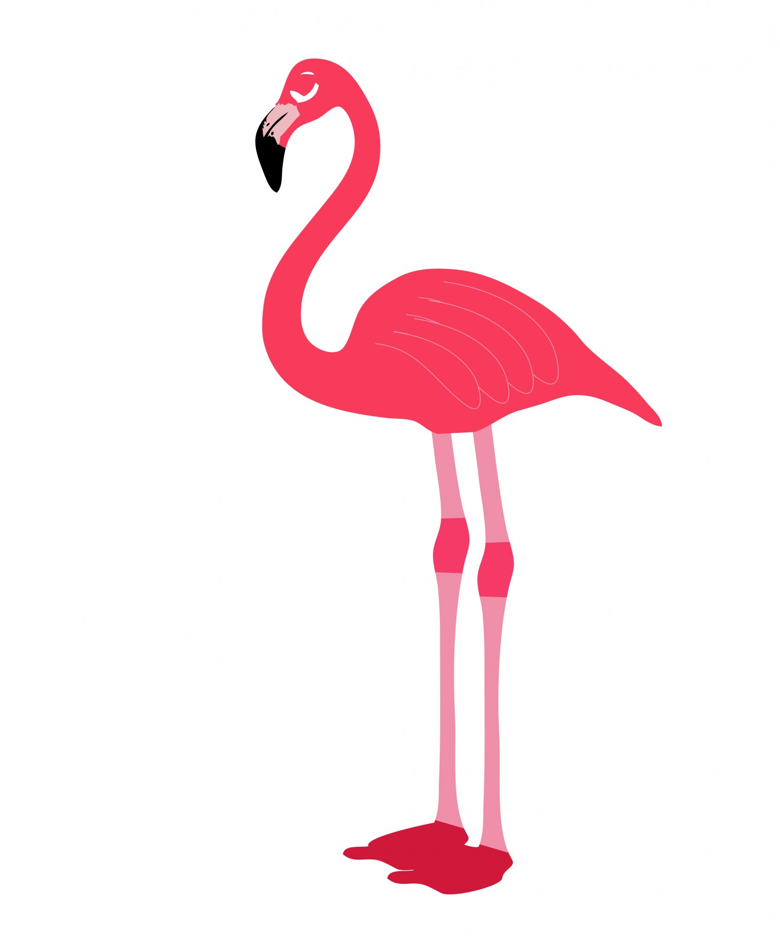 Pink Flamingo Bird Clipart Free Stock Photo.