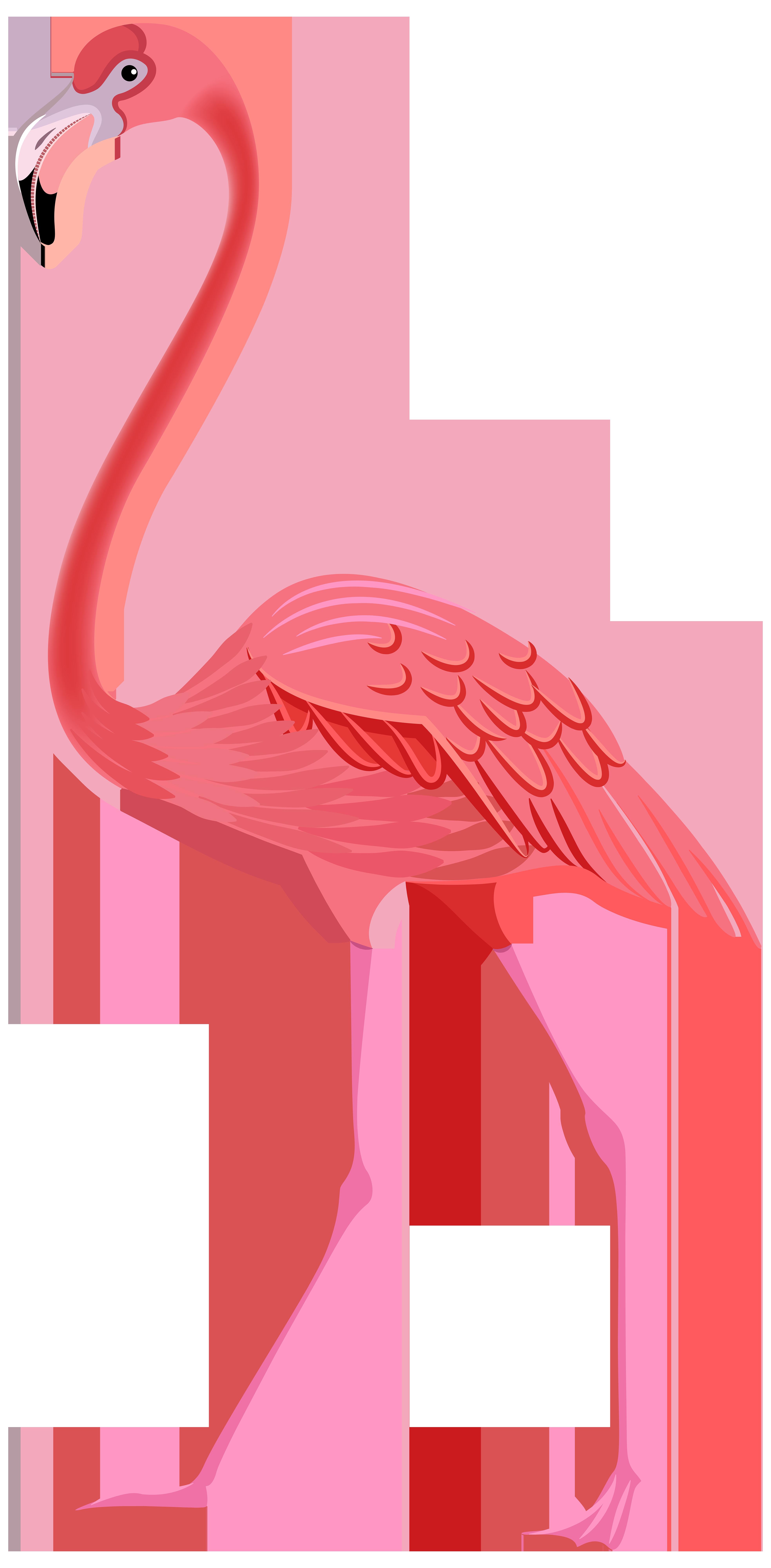 Flamingo clip art free 2.
