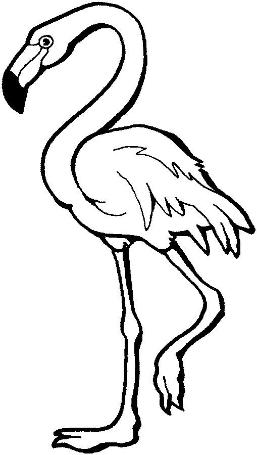 Flamingo Clipart Black And White.