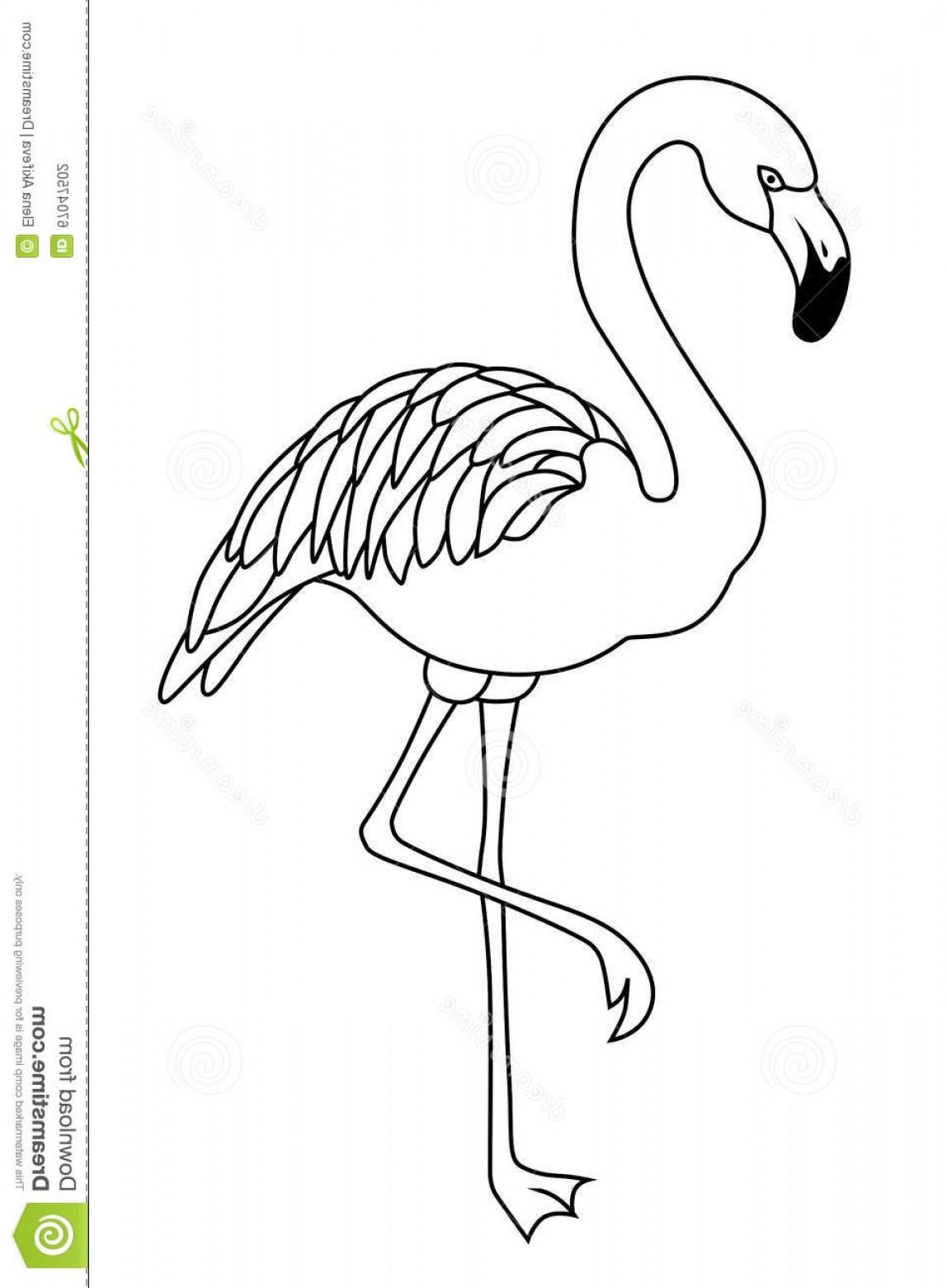 Flamingo Vector Black And White.