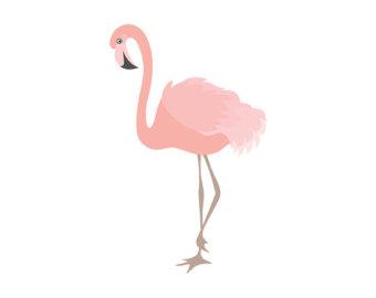 Flamingo Clipart & Flamingo Clip Art Images.