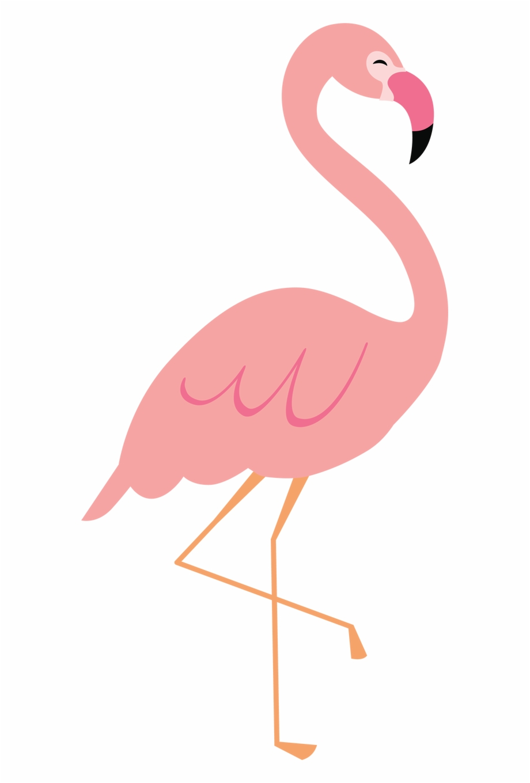 Flamingo Clip File.