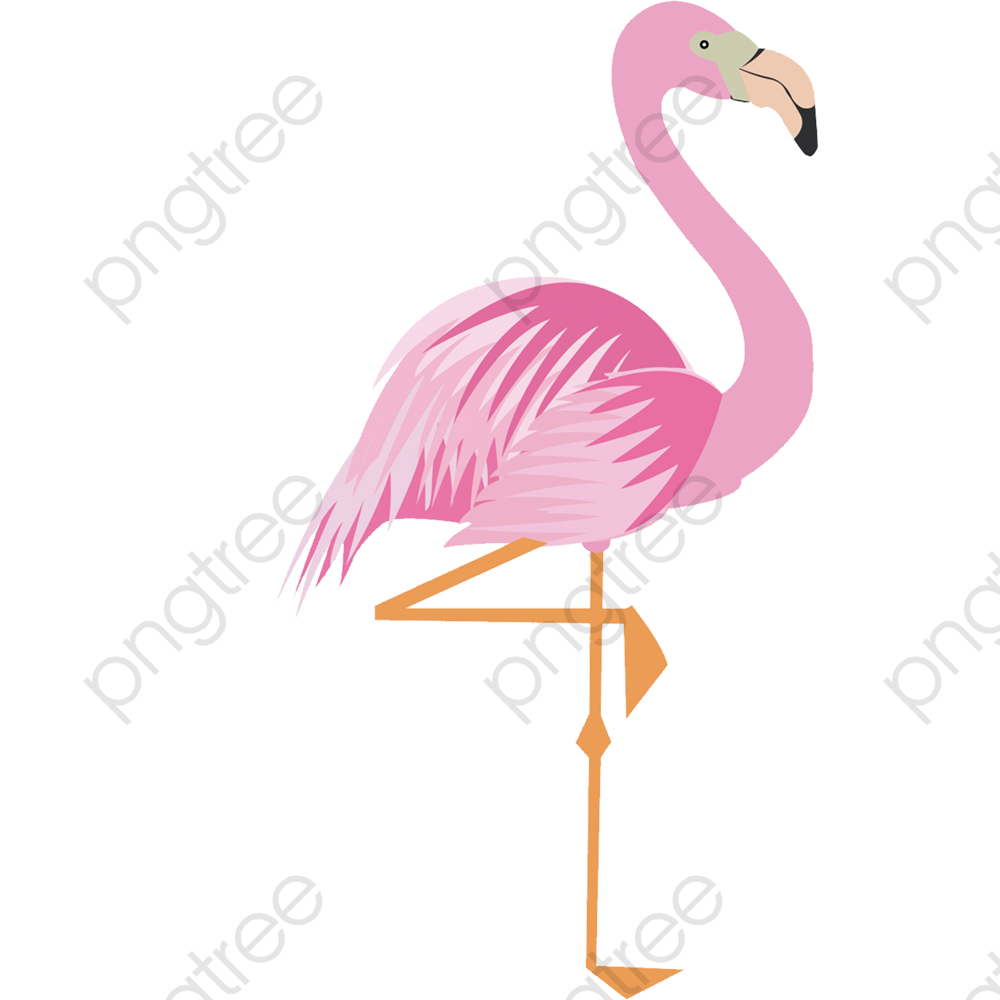 Pink Cartoon Flamingo 17 Material, Cartoon Clipart, Flamingo Clipart.